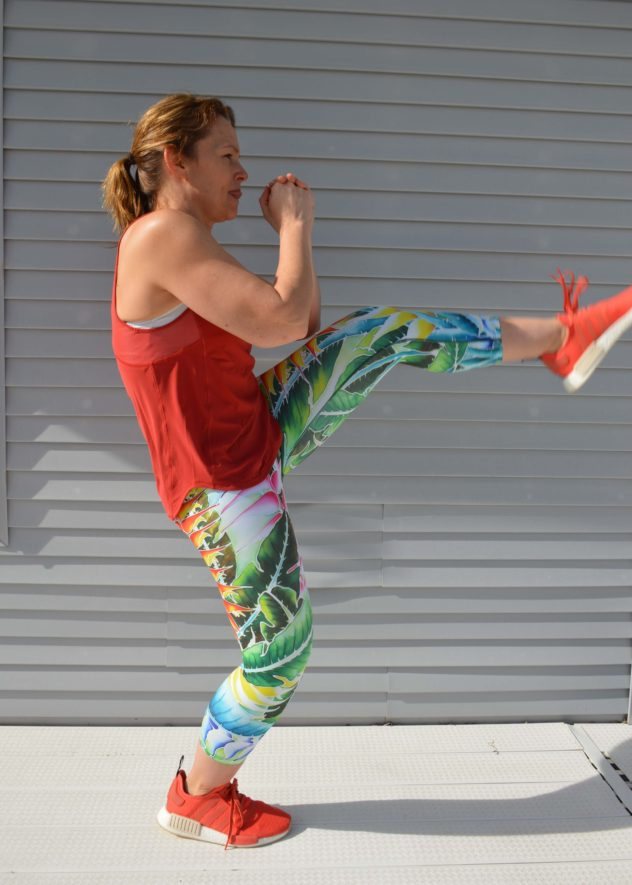 SENI by Fitrebel Lunge