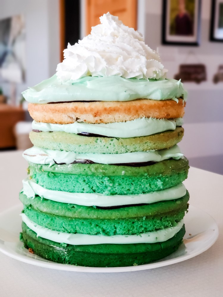 Picture of the five layer green ombre chocolate mint cake
